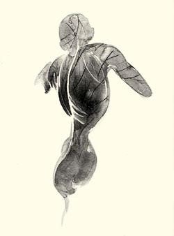 The Conscious Body - leren vrij bewegen